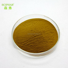 factory purity damiana 50:1 powder with good quality