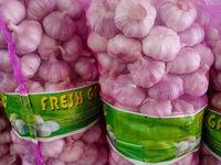 China Cheap Garlic, 10kg/bag or 20kg/bag
