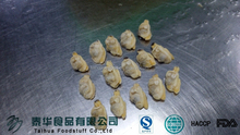 Frozen cleaning vacuum bag boiling clam