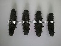 Sea cucumber importers price