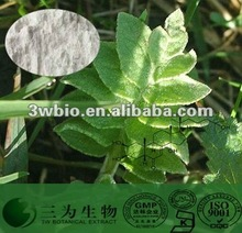 Maral root Extract 20-98% Ecdysterone