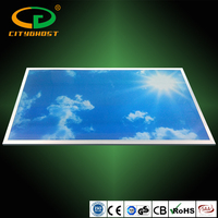 New Design Blue Sky Photo Insert LED Lighting Lamp Acrylic Diffuser 4320LM Flat LED Panel 1200x600 48W