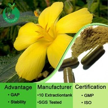 100% natural and high quality of Damiana extract/damiana herb/damiana extract