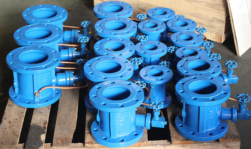 Slow closing dual plate Check Valve