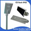 2015 new products 20W motion sensor led solar garden lighting