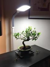 12w sunlight energy saving flexible touch sensor led bedroom lamp,led standing lamp,led floor lamp