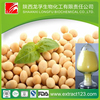 Top Grade Natural Soybean Extract Soy Isoflavones