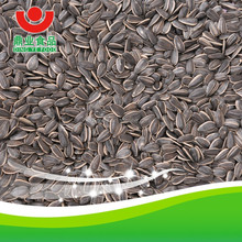 sale 2015 crop Sunflower seeds
