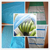 Banana bunch cover bag for expelling parasite