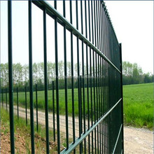 868 656 powder coated Double Wire Mesh Fence Panel