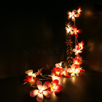 Frangipani String Lights/Fairy/Lamp Brown Furniture Handmade For Home/Christmas Decor/Lighting, LED Available, CE/GS/SAA/UL