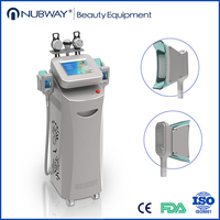 Weight Loss Cryolipolysis Body Slimming Machine Skin Care Product