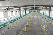 Huabo complete equipment for broiler poultry house
