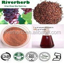 Natural Grape seed extract with 95% OPC