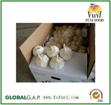 2015 wholesale garlic Fresh Garlic on sale for export