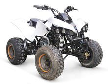 50CC KIDS MINI DUNE BUGGY WITH REVERSE GEAR AVAILABLE HX110C