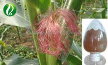 100% Natural Corn silk Extract powder