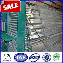 Multi Layers Automatic poultry chicken cages for layer chicken in South Africa