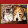 venta al por mayor de impresión de la foto de la pintura de animales