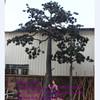 /product-gs/artificial-pine-tree-artificial-cedar-treeartificial-pines-60382832838.html