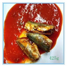 salt water 425g canned mackerel fish in tomato sauce(ZNMT0008)