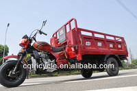 triycle,petrol tricycle,three wheeler auto rickshaw for Bangladesh and Nigeria