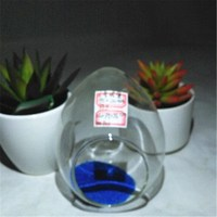 Best Selling Products Egg Shape Glass Terrarium