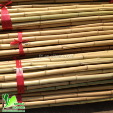 High quablity natural high-end bamboo for agriculture