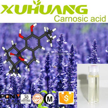 The Most Popular Antioxidant in China High Content Carnosic acid