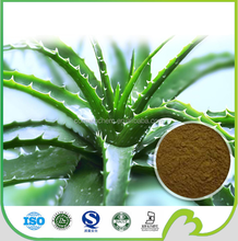 Aloe vera extract powder Aloe barbadensis Miller 40%-98% Aloin Tested by HPLC