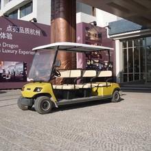 8 Seater mini electric golf cart bus (LT-A8)
