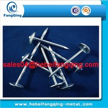 Umbrella roofing nails for Building decoration renovation/aluminum roofing nails china Factory
