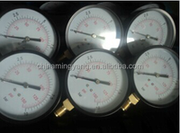 glycerine or silicone oil filled pressure gauge 1/8npt