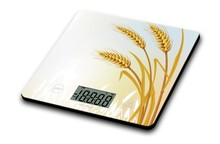 kitchen scale Low Cost 10KG/22 LBS Capacity High Precision Perfect Design