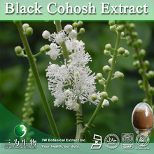 Best Quality Black Cohosh Root Extract Powder,Black Cohosh P.E.
