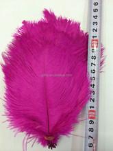 professional supplier Chrismas ostrich feather decorations