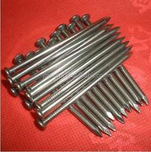 Common wire nails//finishing nails//brad nails