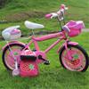 16 inch EN71 approved new style kid bike / kids plastic bike / 16 spiderman bike