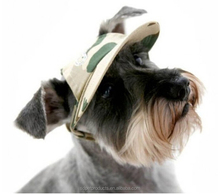 fashional pet cap