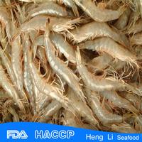 HL002 fresh little shrimp hot sale seafood