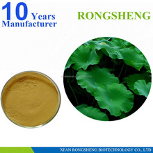 Best Selling Lotus Leaf Powder