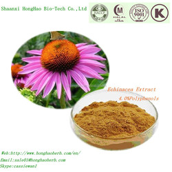 Herb Medicine Echinacea Purpurea Root Extract