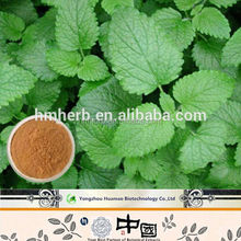 lemon balm powder , Top Quality 5% Rosmarinic acid Lemon Balm Extract improve sleep