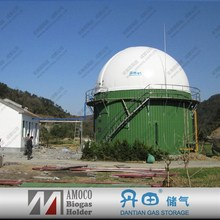 2015 China Good Quality Anaerobic Digester For Oil Waste/Food Waste/Animal Waste with biogas holder