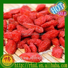 2015 high quality dried goji berries/lycium barbarum