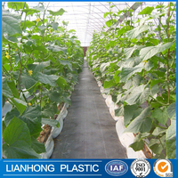 UV treated green ground cover, accept custom order plastic ground cover, wholesale good quality weed mat, weed control