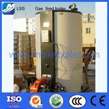 vertical type boiler industrial boiler natural gas