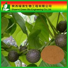 Natural Polygonum multiflorum Thunb extract 2% Phosphatide powder CAS:55327-45-2