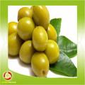 Preço competitivo chinês secas azeitonas para uma boa qualidade