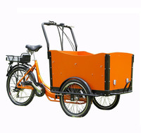 2015 Dutch popular three wheel electric bike / trike / tricycle / bicycle for sale